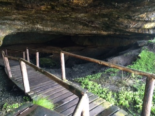 Nelsons Bay Cave Outing