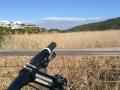 Mountain Biking Plett