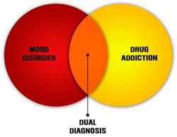 dual diagnosis rehab