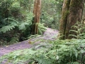 Garden of eden hike